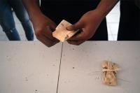 106_tamales-cobao-web.jpg
