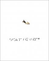 93_fatigue2012.jpg